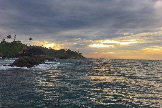 Tour della costa dello Sri Lanka di 4