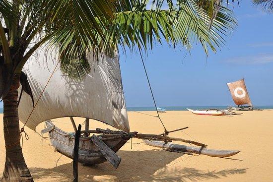 9-Night Grand Tour in Sri Lanka