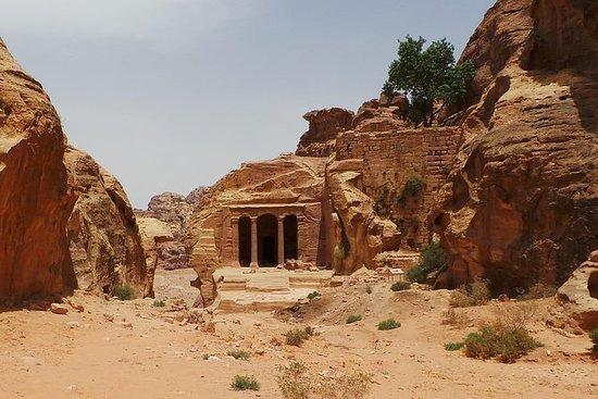 To natttur til Petra og Dødehavet