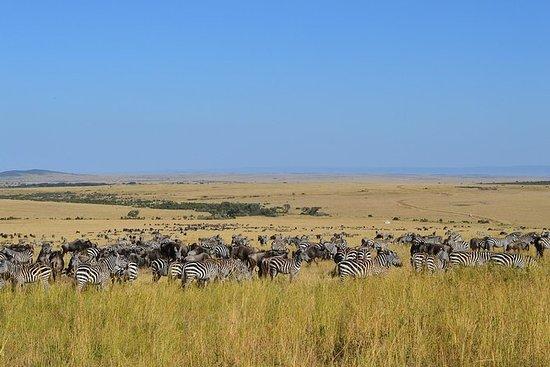 7 dias itinerário em turnê Masai...