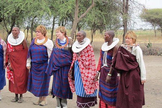 4日間のキャンプサファリ:アルーシャのManyara、Serengeti、N…