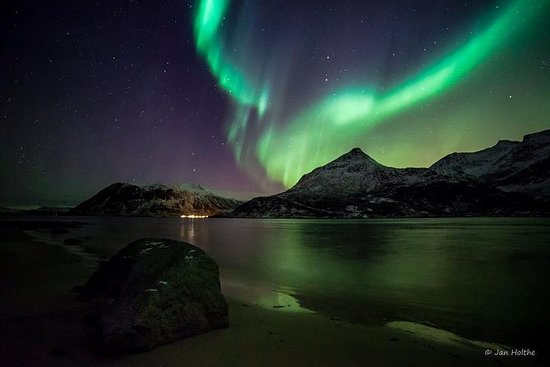 Northern Lights and Whale Safari by...