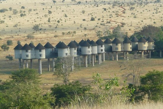 Safari de 2 jours à Taita Hills...
