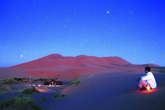 Excursion on camels and Overnight in...