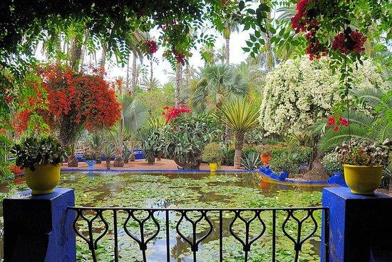 Excursion de 9jours dans les jardins...