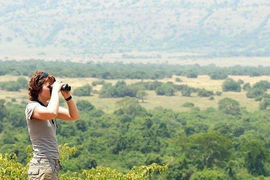 4 jours safari de luxe de la faune