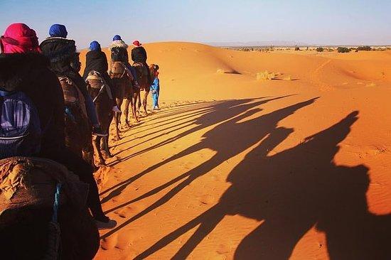 3-dagers tur fra Marrakech til...