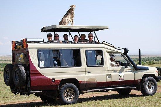 14 dagers Kenya Safari & Zanzibar...