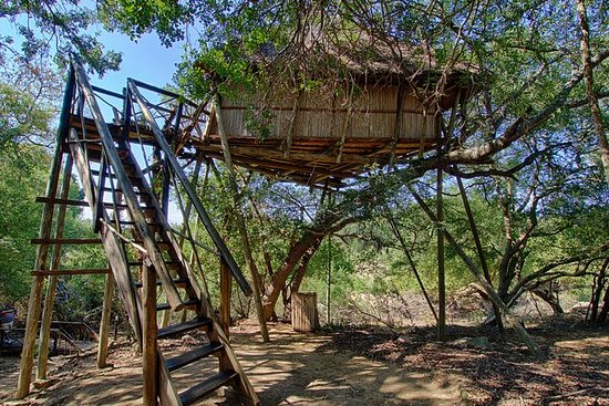 6 giorni Lodge e Treehouse Kruger