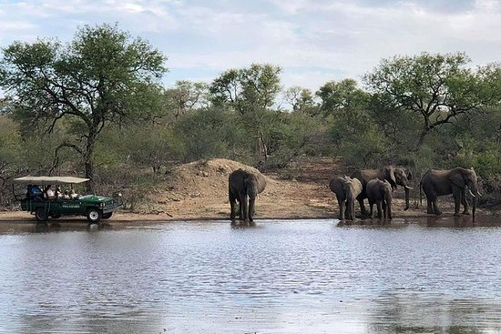 4 Day Budget Kruger National Park...