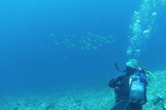 10次潜水套餐