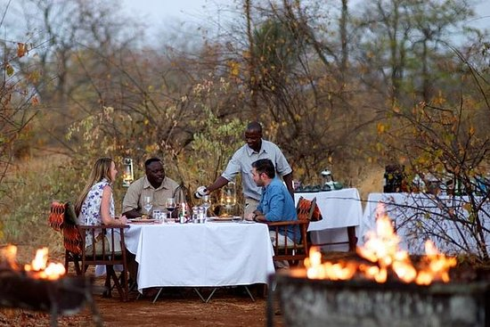 Lo más destacado de Tanzania Safari