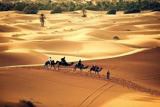 Multi-Day Private Tour fra Marrakech...