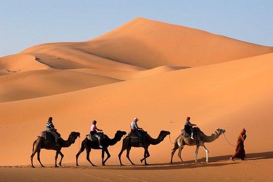 4Days Sahara Desert Tour to Zagora...