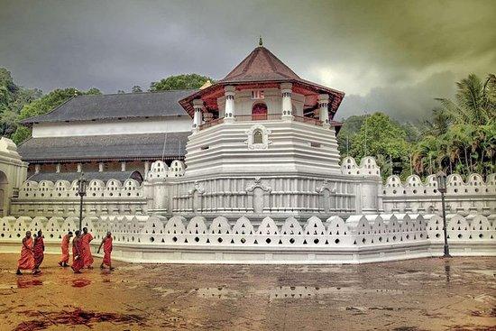 2-daagse tour naar Kandy en Nuwara ...