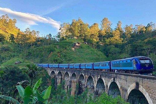 斯里兰卡为期4天的私人观光旅游