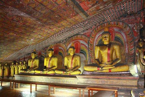 斯里兰卡历史和遗产之旅7天与阿育吠陀治疗