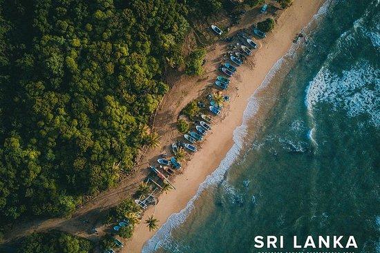 Tour por la costa sur de Sri Lanka de...