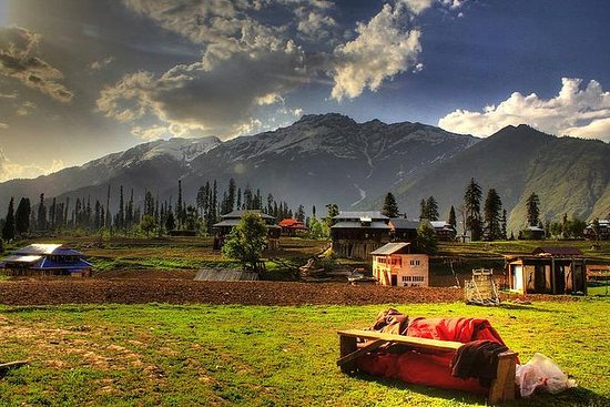 Kashmir Leisure Tour - 08 Nights and...