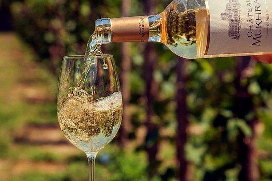 姆茨赫塔(Mtskheta)的有機葡萄酒 - 私人旅遊,提供午餐和品酒