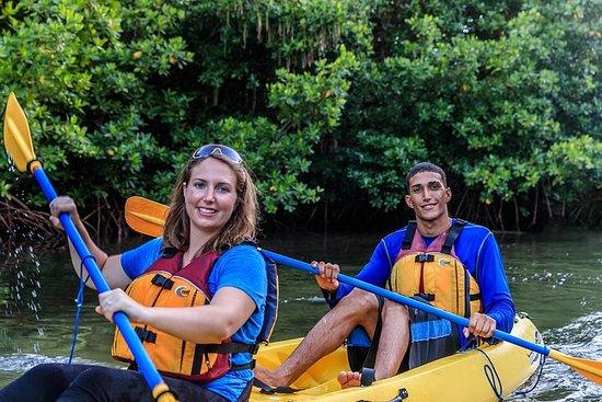 Tour in kayak notturno della