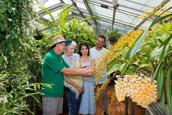 Jardim Botânico nos bastidores da...