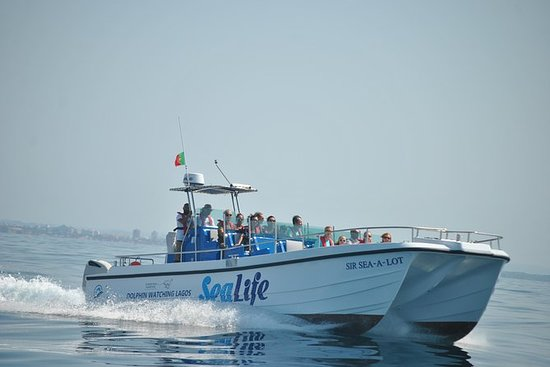 THE 10 BEST Lagos Boat Tours & Water Sports - TripAdvisor