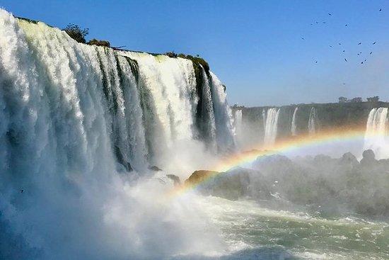 Iguassu Falls Brazilian Side & Bird...