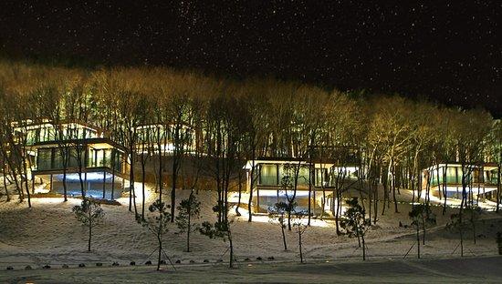 Экофешен коттеджи премиум класса с панорамными окнами, открывающиеся на три стороны