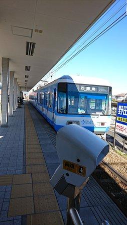 めずらしい青色電車