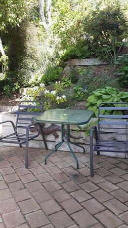 Portobello, New Zealand: A garden for relaxing