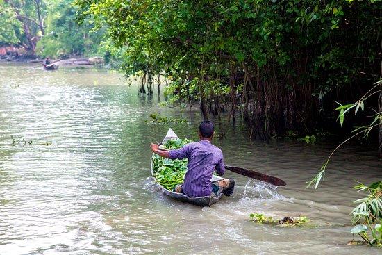 Район Барисал, Бангладеш: Backwater tour