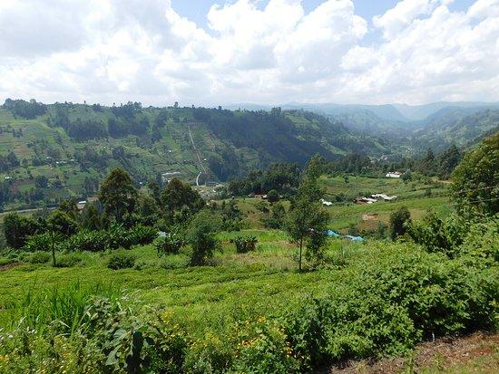 Othaya, Kenia: njigari