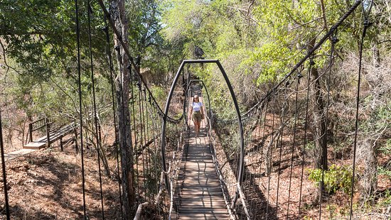 Ulusaba Private Game Reserve, Sudáfrica: Swing bridge