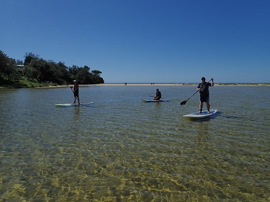 Sussex Inlet, Australia: My friend who is not water confident was able to balance and paddle with a little practice.