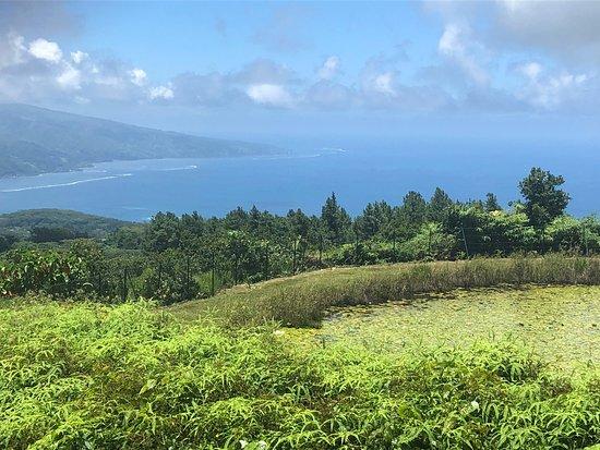 Foto de Único tour por la costa oeste de Tahití: auténtico y fuera de lo común