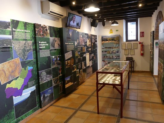 Jimena de la Frontera, España: Museum display downstairs.