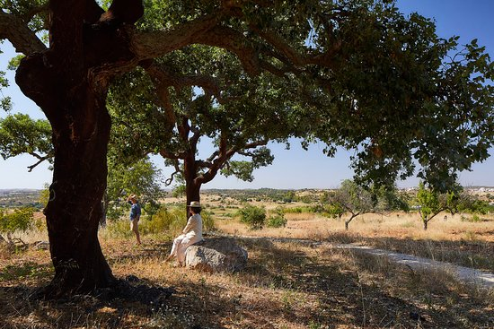 São Bartolomeu, Portugal: Farm View Paths and Nature Walks