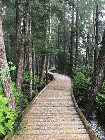 Nordic House Bed & Breakfast: Boardwalk at Sand Beach Recreation Area