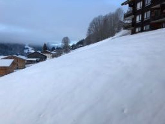 Great snow in mid-Jan this year