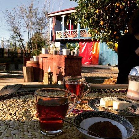 Iran Hotel: Ecolodge