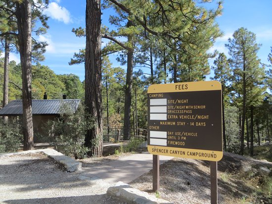 Landscape - Picture of Spencer Canyon Campground, Mount Lemmon - Tripadvisor