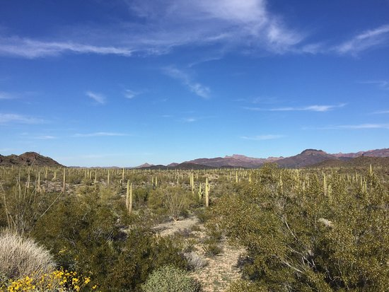 Phoenix Arizona siti di incontri