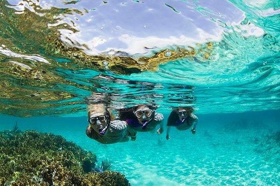 Snorkling Tour i Panama
