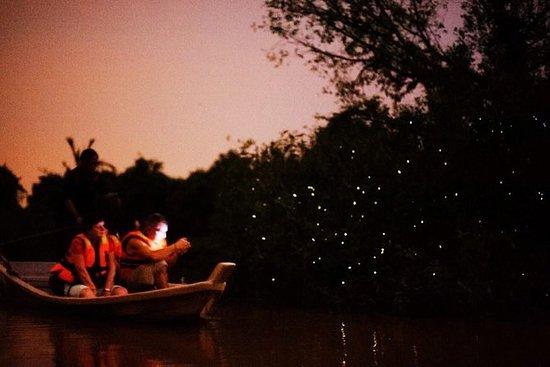 Fireflies og Kuala Selangor Tour...