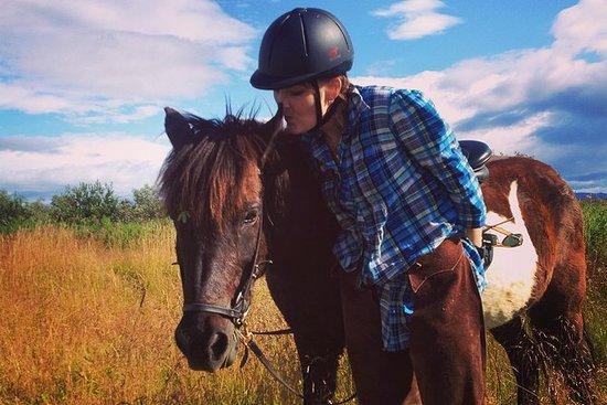 Tour privado de equitación en la...