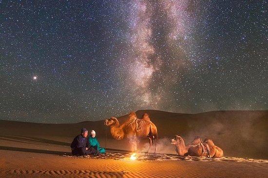 Belleza del Gobi