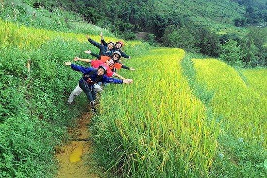 Trekking SAPA, Vietnam 3Days 4 netter...