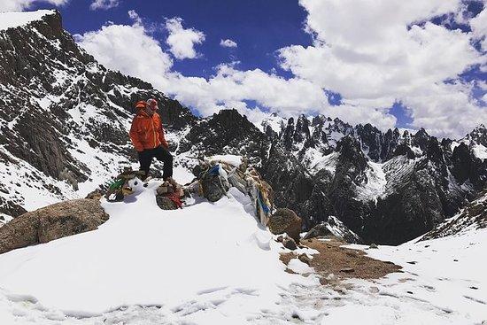 Trekking Nyenbo Yurtse to Alpine...