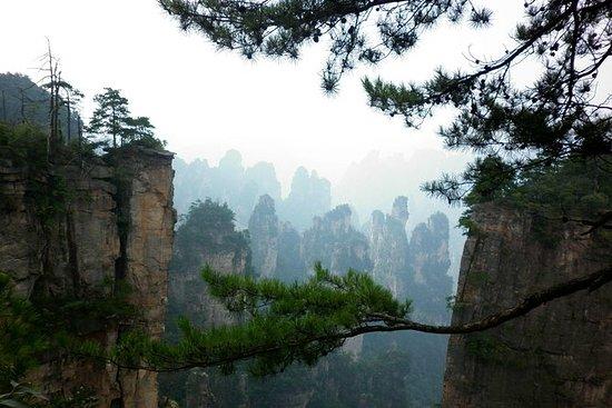 4-Day Zhangjiajie Private Tour to All...